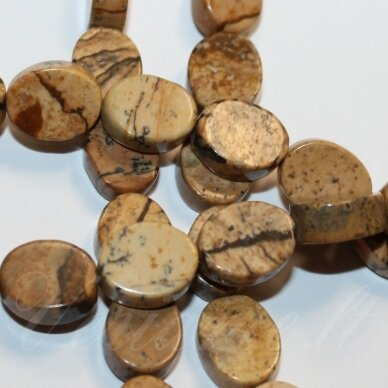JSKAJA-PAV-OVAL1-14x10x4.5 apie 14 x 10 x 4.5 mm, ovalo forma, margas, paveikslinis jaspis, apie 28 vnt.