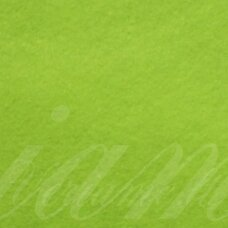 fil0016 about 330 x 420 x 1 mm, light green color, key accessories, 1 pc.