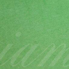 fil0167 about 330 x 420 x 1 mm, light, green color, felt, 1 pc.