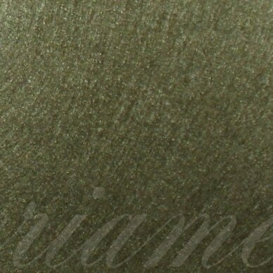 fil0072 about 330 x 420 x 1 mm, dark, moss color, key accessories, 1 pc.