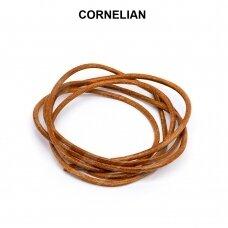 Griffin® odinė virvelė 2mm diametro Cornelian (100cm)