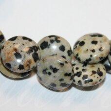 jskaja-dalm-disk-14x6 apie 14 x 6 mm, disko forma, dalmantininis jaspis, apie 28 vnt.