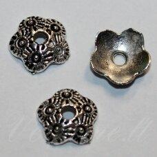 MD3798.5 apie 10 x 3 mm, metalo spalva, kepurėlė, 14 vnt.