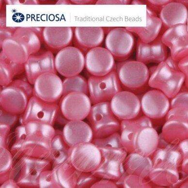 pccb111/01339/02010/25008-04x6 apie 4 x 6 mm, pellet forma, apie 24 vnt.