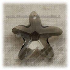 SWP0024-ZVAI-20x21x7 apie 20 x 21 x 7 mm, žvaigždės forma, briaunuotas, skaidrus, dūmo spalva, pakabukas, 1 vnt.